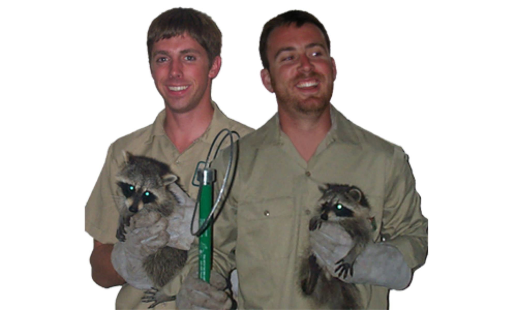Wildlife Removal Gainesville